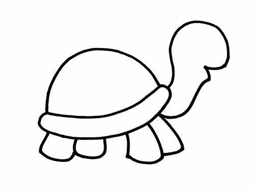 Как нарисовать черепаху для детей - Шаг 8