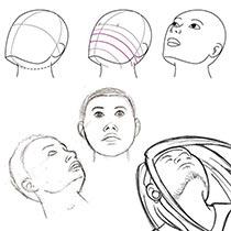 Как нарисовать лицо: основы и пропорции