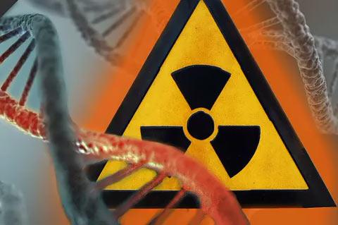 Как влияет радиация на организм человека?