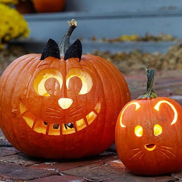 Тыква для изготовления фонарей на Хеллоуин