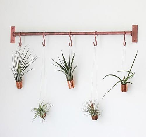 Висячие настенные растения для декора спальни