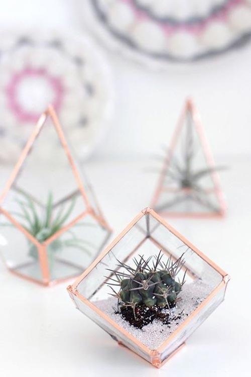 Стеклянные террариумы для декора спальни