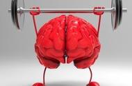 Как развивать память и лучше запоминать